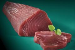 veit-fotodesign-Frisches-Thunfischfilet-Sushi-Qualitaet-auf-tuerkis-Untergrund