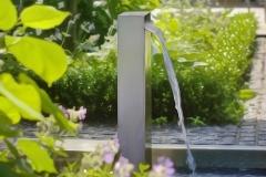 Gartenfotografie-GaLabau-Wasserspeier-dream