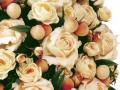 Still-Life-Fotografie Kunstblumenstrauss Close-Up vor weißem Hintergrund