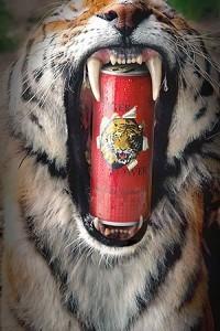 Tigerpower-Endfassung-Retusche-300px